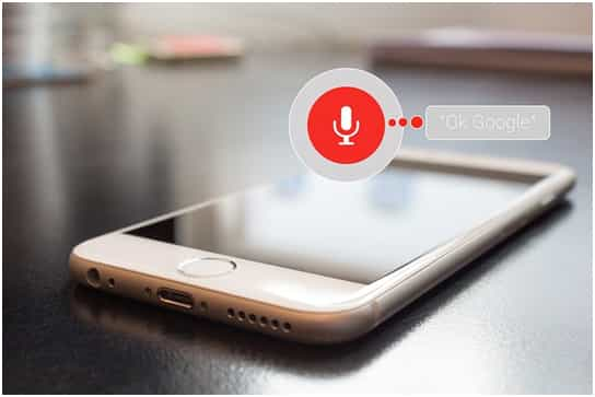 support of voice search